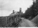 Alken, Burg Thurant, Ansicht vom Burgweg